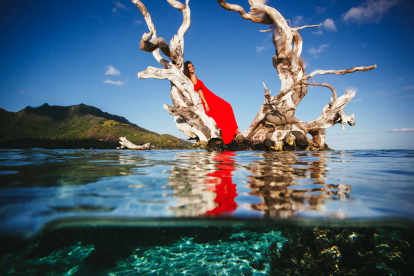 Model poses in red dress on tree in water